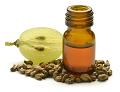 ブドウ種子油のイメージ