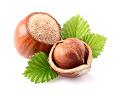 ヘーゼルナッツ油のイメージ