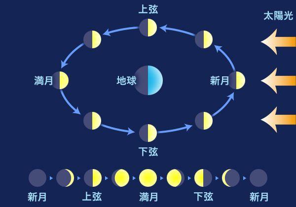 月と生理の関係